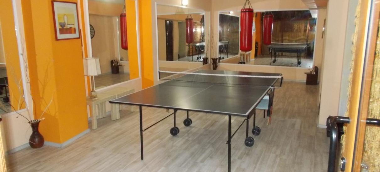 Тенис на маса